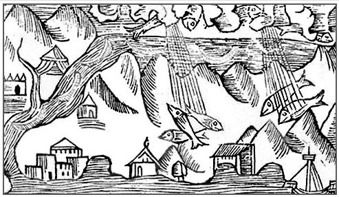 vissen vliegen | Omhoog | Tijdschrift Terras